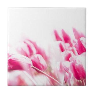 Rosa Tulpen Fliese