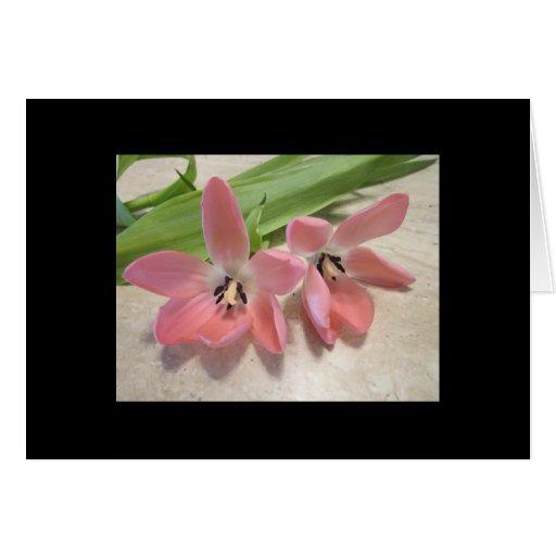 Rosa Tulpen Karten