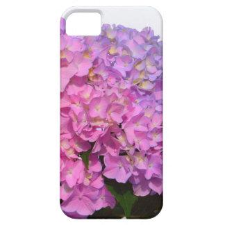 Rosa u. blaue Hydrangeas iPhone 5 Schutzhülle