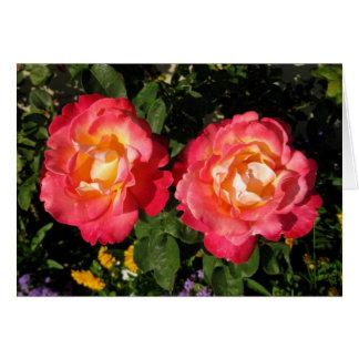 rosa u. gelbe Rosen der Anmerkungskarte - Karte