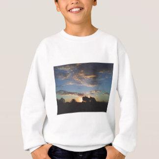 rosa und blauer mein Himmel oh Sweatshirt