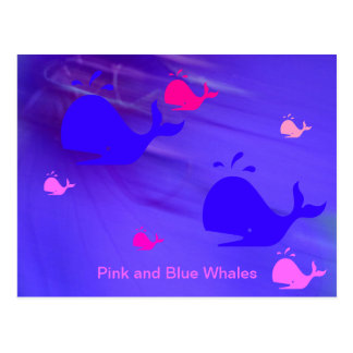 Rosa und Blauwale Postkarte