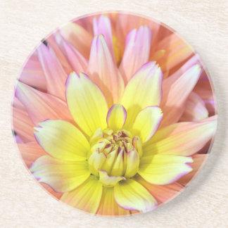 Rosa und gelbe Dahlie-Blume Untersetzer