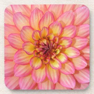 Rosa und gelbe Dahlie-Blumenblüten Getränkeuntersetzer