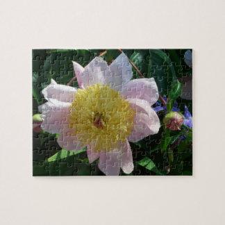 Rosa und gelbe Pfingstrosen-schöner Blumengarten Puzzle