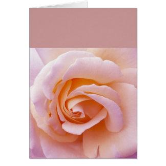 Rosa-und Pfirsich-englische Garten-Rosengrußkarte Karte