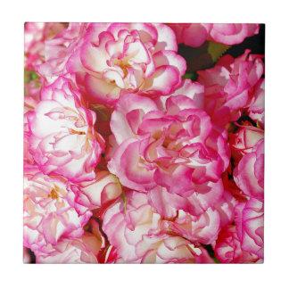 Rosa und weiße Frühlings-Rosen Keramikfliese