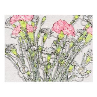 Rosa und weiße Gartennelken Postkarten