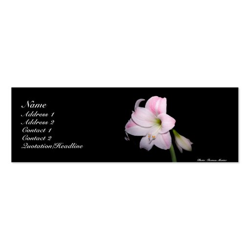 Rosa und wei e lilien karte jumbo visitenkarten zazzle for Visitenkarten gratis vorlagen
