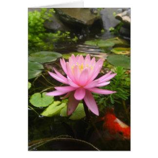 Rosa Wasser-Lilie mit Fischen Karte