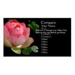 Rosa Wasser-Lilien-Visitenkarte