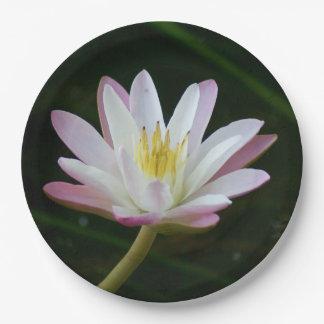"""Rosa Wasserlilien-Blume, Foto 9"""" Pappteller"""