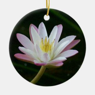 Rosa Wasserlilien-Blume, Foto Keramik Ornament