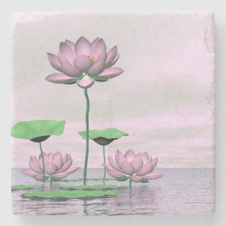 Rosa Wasserlilien und Lotos-Blumen - 3D übertragen Steinuntersetzer