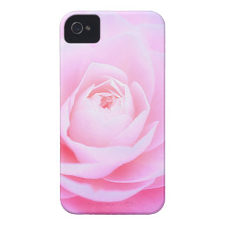 Rosa Weichheit iPhone 4 Cover