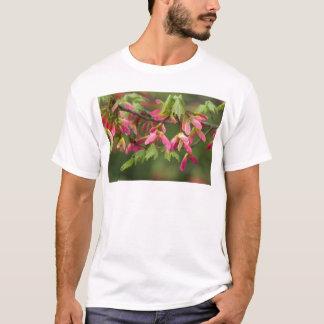 Rosa Winged Platane-Samen - Acer pseudoplatanus T-Shirt