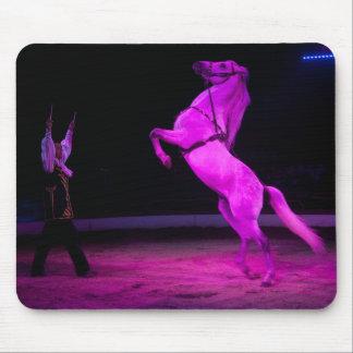 Rosa Zirkus-Pferd Mousepad