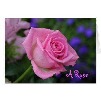 rosaRose Grußkarte