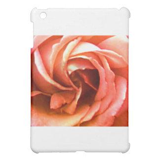Rose Canterbury 3 die MUSEUM Zazzle Geschenke Hülle Für iPad Mini