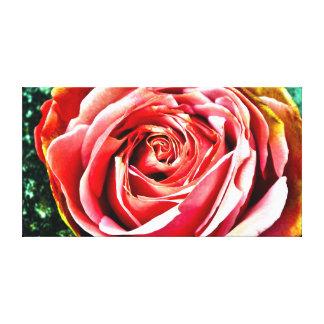 Rose inside leinwanddruck