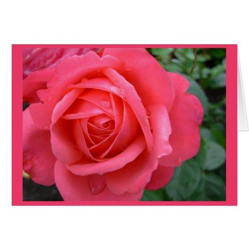 Rose kardiert rosa Blumen-kundenspezifische Gruß-K Karten