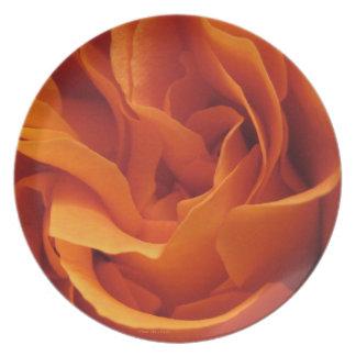 Rose mögen eine Flammen-Platte Melaminteller