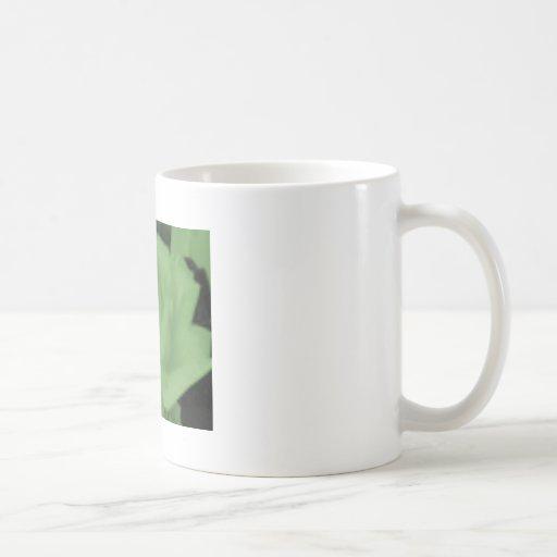 Rose Kaffee Haferl