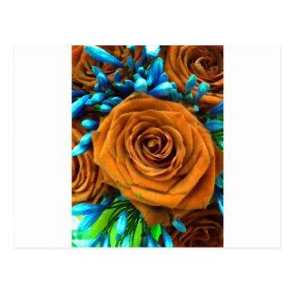 Rose und Agapanthus Postkarte