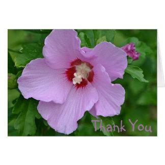 Rose von Sharon danken Ihnen zu kardieren Karte