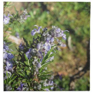 Rosemary-Pflanze mit Blumen in Toskana, Italien Stoffserviette
