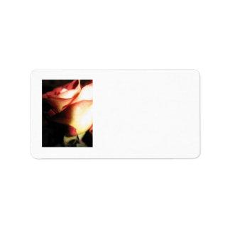 Rosen-Adressen-Etikett Adressetikett