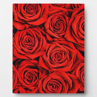 Rosen-Blumenblumenblatt-Blüten-Pflanzen-Blume Fotoplatte