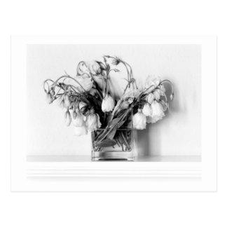 Rosen-Blumenstrauß in Schwarzem u. im Weiß Postkarte