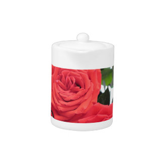 Rosen-Blumenstrauß mit Babys Atem