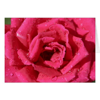 Rosen-Foto-Grußkarte Grußkarte