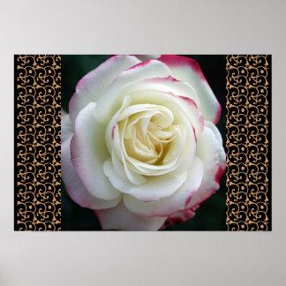 Rosen-Garten-Modchic-noble Blumenblüten Plakatdruck