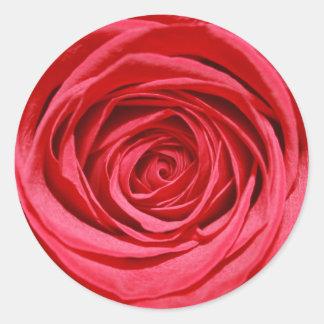 Rosen-Hochzeits-Blumen-glatte Blumenmuster Runder Aufkleber