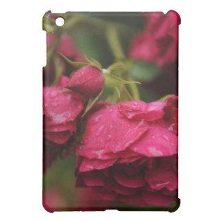 Rosen iPad Fall iPad Mini Hülle
