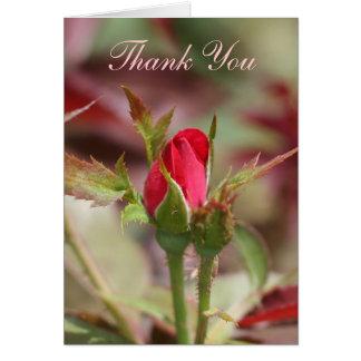 Rosen-Knospen danken Ihnen zu kardieren Karte