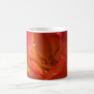 Rosen-Nahaufnahme Kaffeetasse