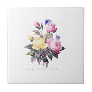 Rosen Redoute Schönheit Fleurs weiße Fliese