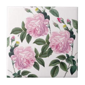 Rosen-rosa Vintager Traum Fliese