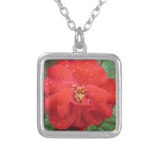 Rosen-rotes Wasser-Blüte Versilberte Kette