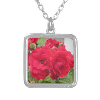 Rosen-Rouge Fleur Versilberte Kette