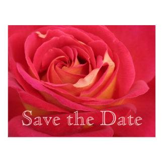 Rosen-Save the Date 35. Postkarte