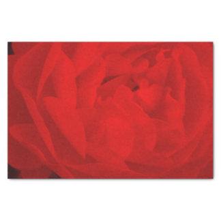 Rosen-Seidenpapier Seidenpapier