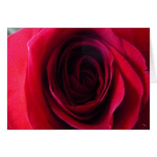 Rosen-Wesentliches Karte