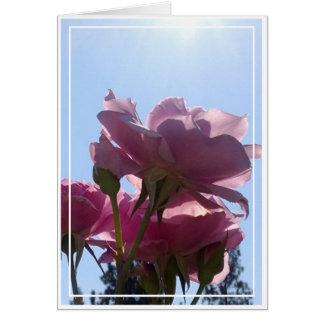 Rosenkarte, freier Raum, 7 Karte