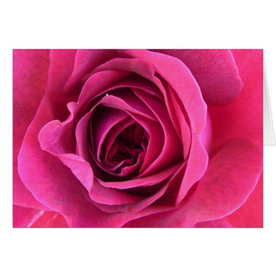 Rosentraum in rosa karte