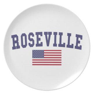Roseville CA US Flagge Party Teller